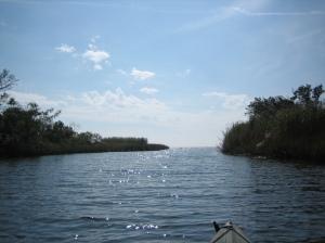 kayak-bayou